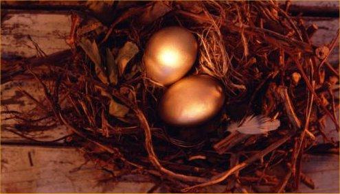 huevos_de_oro.jpg